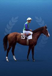 racehorse_thumb